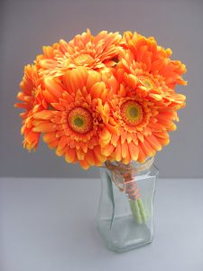 Orange Gerbera, stems wrapped in orange and grey ribbon - from £62.00