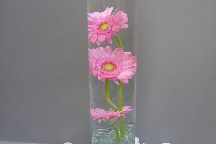 Table Decoration - Cylinder Vase with Gerbera & floating candle- from £20.00